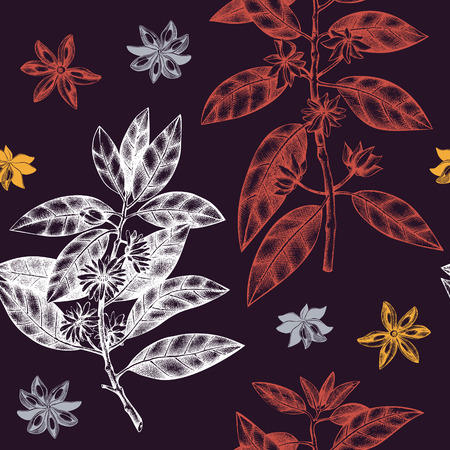 Seamless pattern with flowers and seeds. Vector background with true anise tree. Aromatic elements illustration.