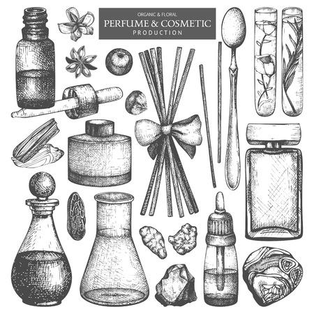 Collection vectorielle de pots et de bouteilles. Ensemble d'ingrédients de production de parfumerie et de cosmétiques dessinés à la main vintage. Matière aromatique et médicinale.