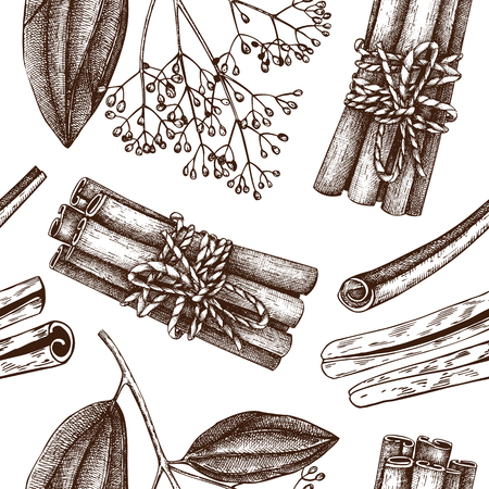 Vector hand drawn background with Cassia plant sketches. Kitchen spice seamless pattern. Vintage cinnamon bark drawing.