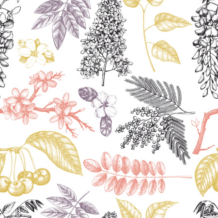 Vector background with hand drawn blossoming trees illustration. Spring flowers sketch collection. Floral seamless pattern Vector Illustration