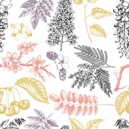 Vektorhintergrund mit Hand gezeichneter blühender Baumillustration. Frühlingsblumen Skizzensammlung. Nahtloses Blumenmuster Vektorgrafik