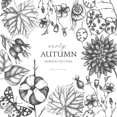Vintage design with hand drawn leaves, flowers, snails, butterflies, and seeds sketches. Autumn nature background. Vector card template. Botanical illustration.