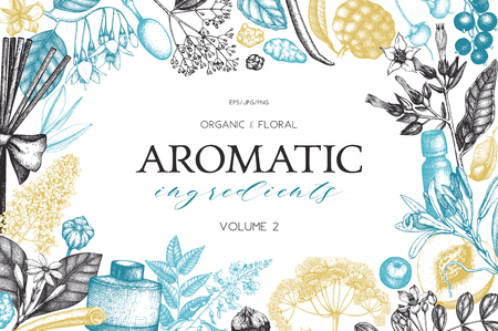 Vector Hand drawn perfumery and cosmetics ingredients illustration. Aromatic and medicinal plant design. Vintage template