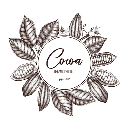 Vector Cocoa tree illustration. Vintage background with flowers, fruits and beans. Botanical template design. Aromatic and tonic elements frame.