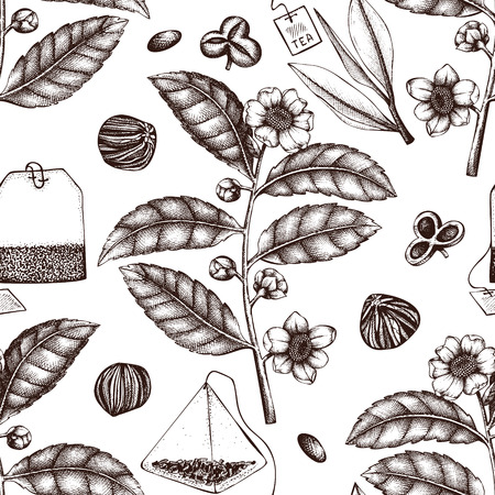 Vector background with hand drawn Chinese tea plant illustration. Decorative inking illustraion of camellia sinensis in flowers and leaves. Botanical seamless pattern. 矢量图像