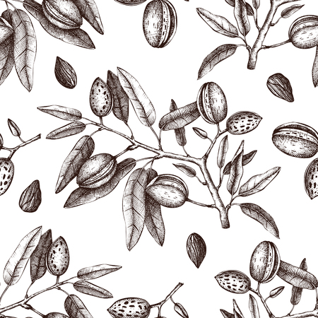 Vector backgroung with Almond illustration. Hand drawn nut tree sketch. Botanical seamless pattern with vintage tonic plants drawing.