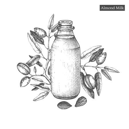 Healthy food template. Hand drawn illustrations of almonds and bottle of almond milk. Branding or packaging vector design.