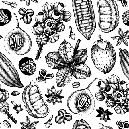 Vector background with tonic and spicy plants. Hand drawn seamless pattern with spices illustrations. Vintage aromatic elements. Sketched flowers, leaves, seeds, fruits, nuts, beans. Иллюстрация