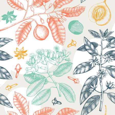 Seamless pattern with clove tree, vanilla, anisetree, nutmeg, cinnamon. Vintage leaves, flowers, fruand seeds. Abstract background with spice plants. Aromatic elements illustration.