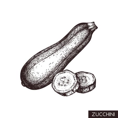 Ilustracje wektorowe cukinii. Ręcznie rysowane warzywo w stylu grawerowanym. Rysunek zdrowej żywności. Produkt do projektowania menu.