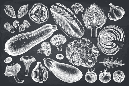 Vector collection of hand sketched vegetables. Vintage veggies and spices illustrations set. Healthy food drawings for vegetarian or organic menu design. Farm fresh products on chalkboard Stock Vector - 122081388