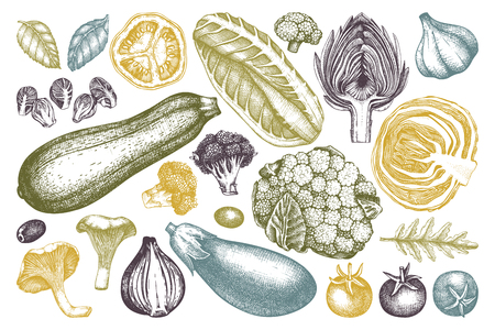 Vector collection of hand sketched vegetables. Vintage veggies and spices illustrations set. Healthy food drawings for vegetarian or organic menu design. Farm fresh products.