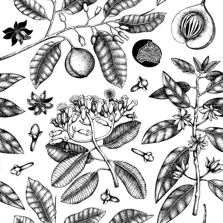 Seamless pattern with clove tree, vanilla, anisetree, nutmeg, cinnamon. Vintage leaves, flowers, fruits. Vector background with spice plants. Aromatic and tonic elements illustration.
