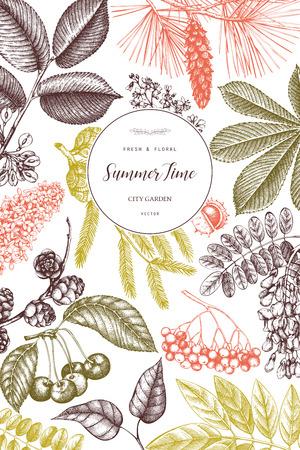 Vektordesign mit Hand gezeichnetem Zweig, Blättern, Samen, Zapfen, Fruchtskizze. Vintage-Rahmen mit botanischen Elementen. Bäume und Libelle Illustrationen Vektorgrafik