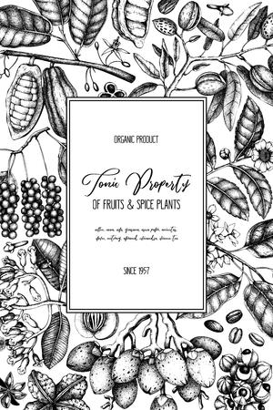 Modèle de conception de vecteur avec des plantes toniques et épicées. Illustrations d'épices dessinées à la main. Cadre vintage avec éléments aromatiques. Fleurs esquissées, feuilles, graines, fruits, noix, haricots.
