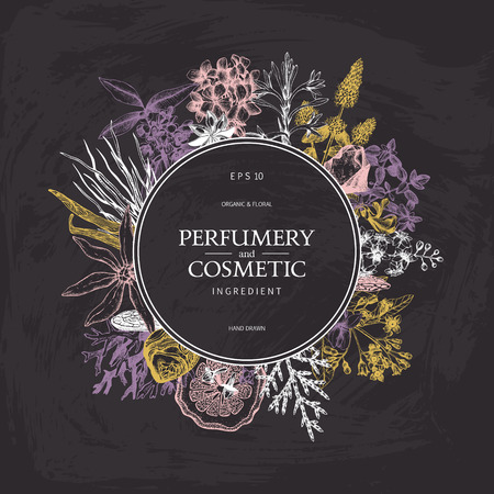 Vintage template. Ink hand drawn design with plants and fruits on chalkboard. Vector illustration with highly detailed perfumery and cosmetics ingredients. Иллюстрация
