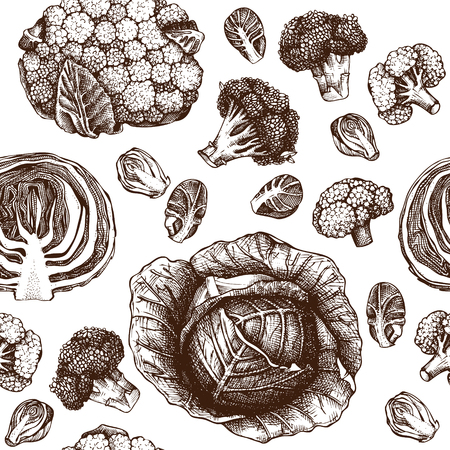 Cabbage Background. Vintage seamless pattern. Farm fresh and locally grown products.