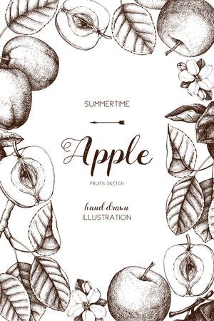 Vector background with hand drawn apple illustration. Vintage card design with fruits sketch. Botanical garden template.