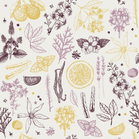 Vector seamless pattern with hand drawn perfumery and cosmetics ingredient sketch. Vintage background with aromatic plants for high-quality scented industry
