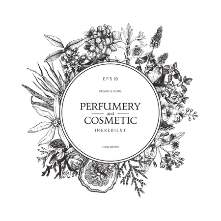 Vintage template. Ink hand drawn design with plants and fruits isolated on white. Vector illustration with highly detailed perfumery and cosmetics ingredients.
