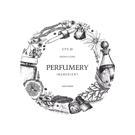 Vintage floral design with flowers and leaves sketch. Floral and organics ingredients for perfumery background. Vector template.