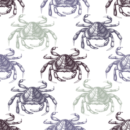 Vector background with hand drawn crab sketch. Seamless sea life pattern. Vintage seafood illustration.