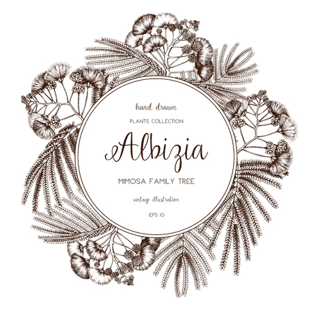Silk tree in flowers. Vintage card or invitation design with Albizia sketch for wedding decoration. Save the Date. Иллюстрация