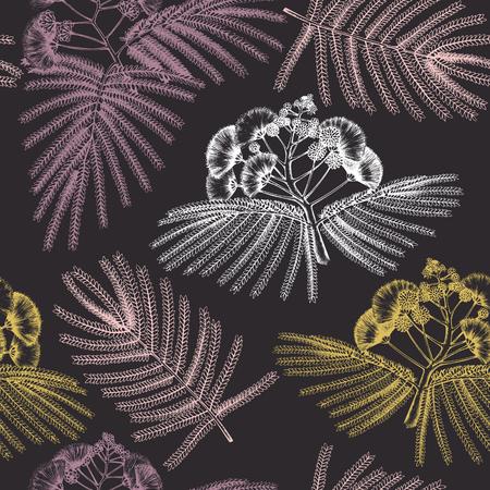 Seamless pattern with hand drawn Albizia flowers sketch. Albizia julibrissin, silk tree. Vintage floral background. Botanical illustration. Illustration