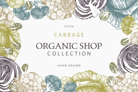 Vector design with Hand drawn cabbage illustration. Organic food background. Vintage template isolated on white