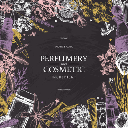 Vintage template. Ink hand drawn design with plants and fruits on chalkboard. Vector illustration with highly detailed perfumery and cosmetics ingredients.  イラスト・ベクター素材