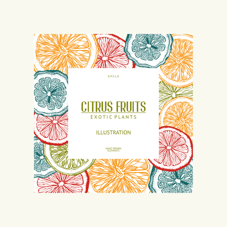 Vintage template. Ink hand drawn design with citrus fruits in pastel colors. Vector illustration with highly detailed exotic plants sketch