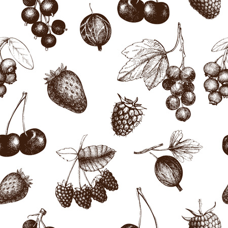 Decorative pattern with hand drawn vintage wild and garden berries. Vintage fruit and berry seamless background isolated on white