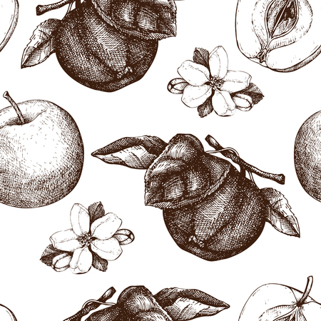 Vector background with hand drawn apple illustration. Seamless pattern with fruits sketch. Vintage botanical garden drawing.