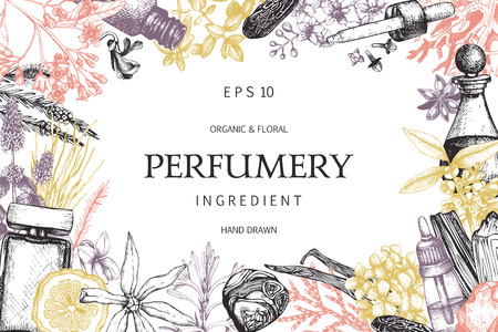 Vector design with hand drawn perfumery and cosmetics ingredients. Decorative background with vintage aromatic plants for perfumery Vettoriali