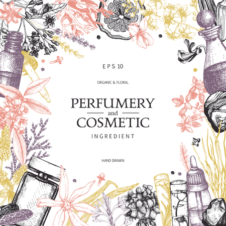 Vector design with hand drawn perfumery and cosmetics ingredients. Decorative background with vintage aromatic plants for perfumery  イラスト・ベクター素材