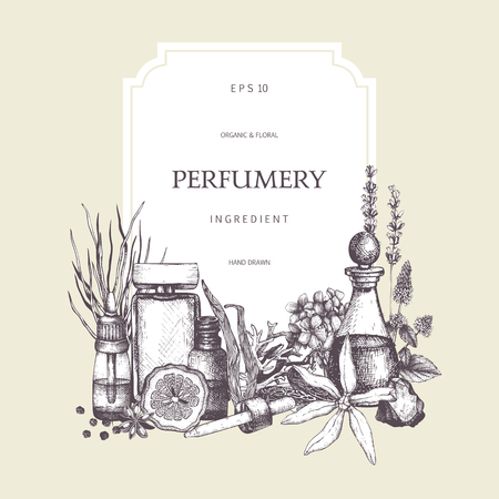 Vector card design with hand drawn perfumery and cosmetics ingredients sketch. Vintage frame with aromatic plants illustration