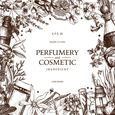 Vintage template. Ink hand drawn design with plants and fruits on white. Vector illustration with highly detailed perfumery and cosmetics ingredients sketch.