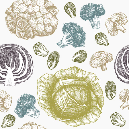 Seamless pattern with Hand drawn cabbage illustration. Organic food vintage background in pastel colors