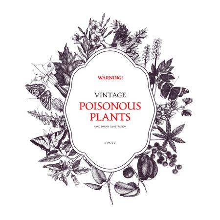 Vektordesign mit handgezeichneten giftigen Pflanzen. Botanische Abbildung. Vintage schädliche Pflanzen skizzieren Hintergrund. Gefährliche Blumen Retro-Vorlage isoliert auf weiss. Vektorgrafik