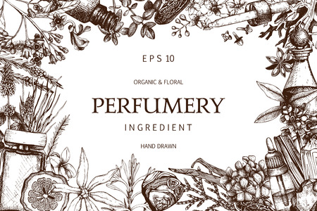 Vector design with hand drawn perfumery and cosmetics ingredients. Decorative background with vintage aromatic plants for perfumery Çizim