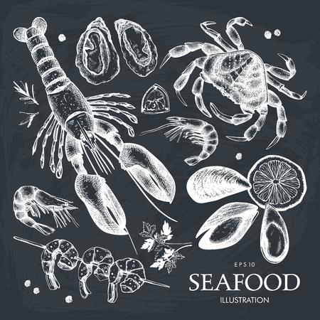 Ensemble d'illustrations vectorielles de fruits de mer. Menu du tableau. Collection de croquis de fruits de mer dessinés à la main - homard frais, crabe, huître, moule, crevette et épices.