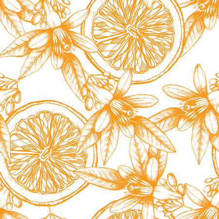 Flowers and leaves sketch. Vintage citrus background isolated on white