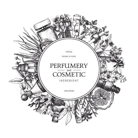 Disegno vettoriale con ingredienti di profumeria e cosmetici disegnati a mano. Sfondo decorativo con schizzo di piante aromatiche vintage.