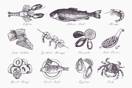 신선한 생선, 랍스터, 게, 굴, 홍합, 오징어 링, 캐비어. 빈티지 음식 스케치 세트입니다. 메뉴 템플릿 벡터 (일러스트)