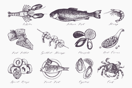 Fresh fish, lobster, crab, oyster, mussel, squid ring, caviar. Vintage food sketch set. Menu template Ilustração