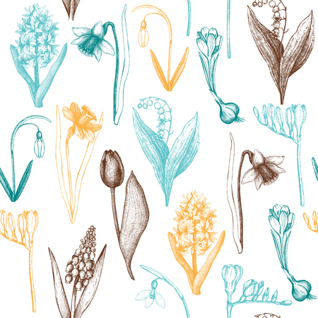 Vector seamless pattern with hand drawn spring flowers illustrations. Vintage background. Botanical sketch.