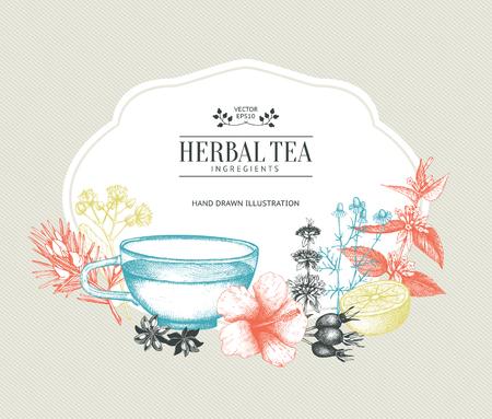Vintage card design with herbal tea sketch collection. Fruits and vegetables Иллюстрация