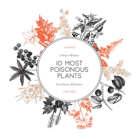 Vektorrahmendesign mit Hand gezeichneter giftiger Pflanzenillustration. Vintage schädliche Pflanzen skizzieren Hintergrund. Botanische Vorlage mit giftigen Blumen isoliert auf weiss.