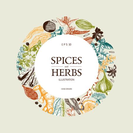 Vektorkartendesign mit handgezeichneten Gewürzen und Kräutern. Dekorativer bunter Hintergrund mit Skizze der aromatischen Pflanzen der Weinlese.