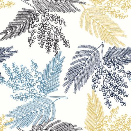 Nahtloses Muster mit Hand gezeichneter Mimosenskizze. Vektorhintergrund mit dekorativen Silver Wattle-Baumelementen. Vintage Akazienillustration.